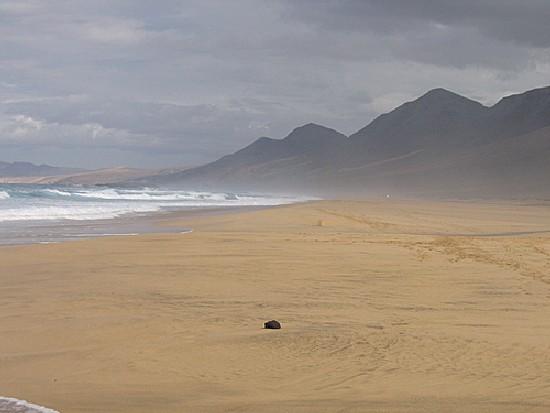 20100626135300-playa-solitaria.jpg