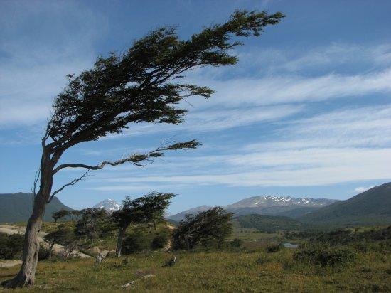 20110810193423-vientos.jpg