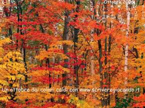 20061002153548-octubre2006.jpg