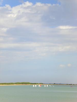 20111023132840-veleros.jpg