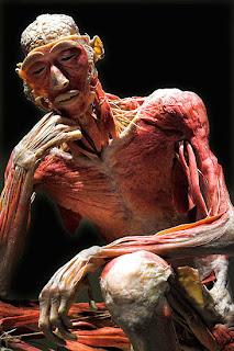 20120313201224-cadaver-de-goma.jpg