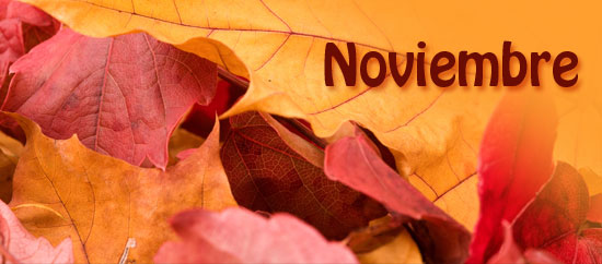 20131130155150-noviembre.jpg